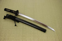 Nyumon Wakizashi - Click for larger picture!